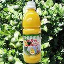 シークヮーサー果汁