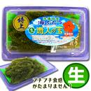 【特上】沖縄特産 生海ぶどう (100g)
